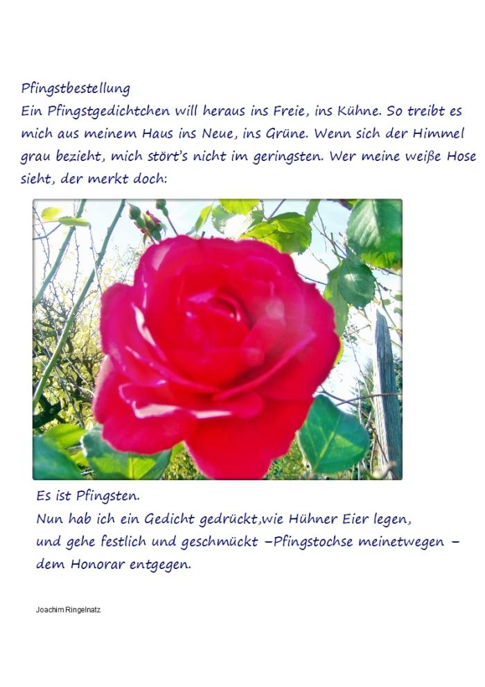 Pfingstbestellung – JoachimRingelnatz